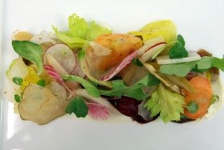 Salad beets, fennel, Asian pear, endive, poached quince, and spiced walnuts.
