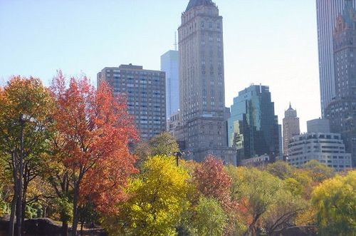 Automne-a-new-york-261063